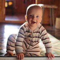 Babygruppe (6-12 Monate)